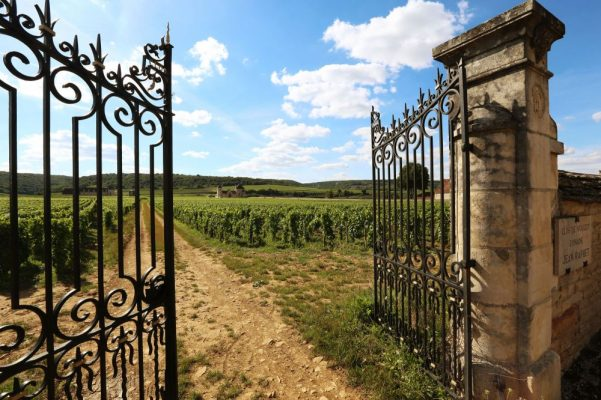 Clos de Bourgogne