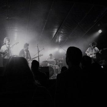 Concerts des houblonnades