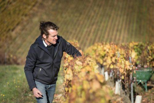 Richard Rottiers du Doamine des Malandes dans les vignes