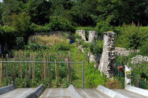 Murs à pêches Montreuil