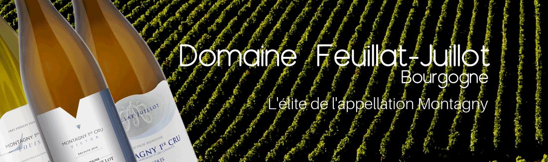 Domaine Feuillat-Juillot
