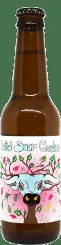 Bouteille de bière artisanale Wild Sour Creature Brasserie Two Dudes