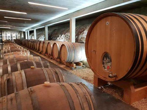 Chai du Domaine Modat en Côtes du Roussillon