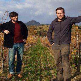 Quentin et Louis Modat du Domaine Modat en Côtes du Roussillon
