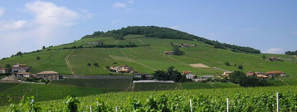 Vignoble du Beaujolais et Mont Brouilly