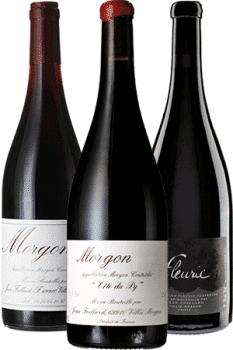 Bouteilles de vin du Domaine Jean Foillard