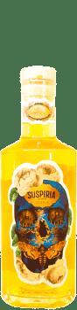 Vodka Citra Mosaic Suspiria Brasserie la Débauche