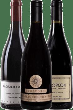 Bouteille de vins du coffret Découverte de Jean-Paul Brun du Domaine des Terres dorées