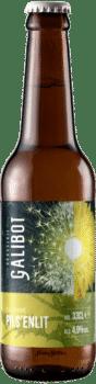bouteilles de bière pils pisenlit brasserie galibot