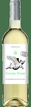 Bouteille de vin Cochon Volant Blanc du Château de Caraguilhes